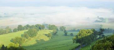Ranek mgła w Berkley dolinie Obrazy Royalty Free