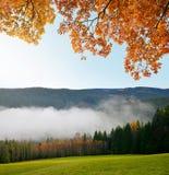 Ranek mgiełka w parku narodowym Sumava Zdjęcia Royalty Free