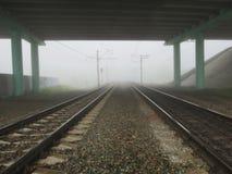 Ranek mglisty na drodze Obraz Stock