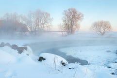 ranek mroźna zima Zdjęcie Royalty Free
