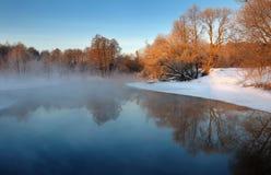 ranek mroźna zima Zdjęcie Stock