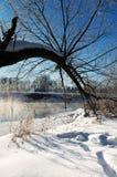 ranek mroźna zima Fotografia Royalty Free