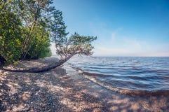 Ranek na brzeg piękny jezioro, krajobraz zdjęcie stock