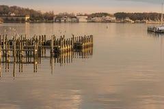 Ranek na Chesapeake zatoce Fotografia Stock