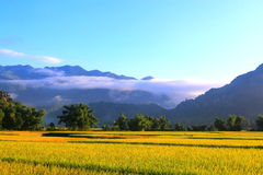 Ranek na Mai Chau dolinie Obraz Royalty Free