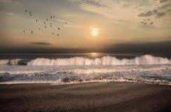 Ranek na plaży w Floryda Fotografia Royalty Free
