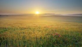 Ranek natury krajobraz zdjęcia royalty free