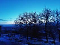 Ranek przed wschód słońca, śnieżny ranek fotografia royalty free