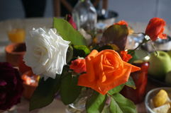 Ranek roses10 Zdjęcia Stock