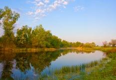 ranek rzeki lato zdjęcie stock