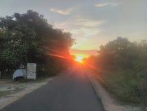 Ranek Słońce fotografia stock
