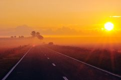 ranek słońce obrazy stock