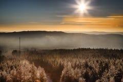 Ranek Słońce Zdjęcie Royalty Free