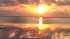 Ranek Słońce zdjęcie stock