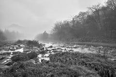 ranek strumień Obrazy Stock