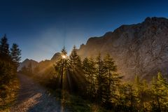 Ranek w Juliańskich Alps Obrazy Stock