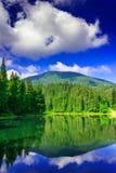 Ranek w lasowym pobliskim jeziorze w górach Zdjęcie Royalty Free