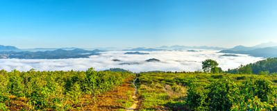 Ranek w miasteczku na plateau mgła zakrywających domach Obrazy Royalty Free