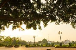 Ranek w parku Zdjęcia Royalty Free