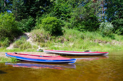 Ranek w rzece Obraz Royalty Free
