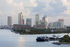 Ranek W Tampa Zdjęcia Royalty Free