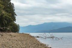 ranek wzdłuż brzeg puget dźwięk blisko Tacoma zdjęcia stock