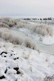 ranek zima Fotografia Stock