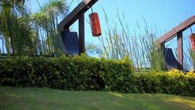 Rangée de lanterne japonaise sur le ciel, la paume et l'herbe banque de vidéos