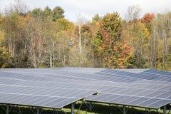 Rangée de panneau solaire dans le domaine Image stock