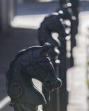 Rangée de quartier français de la Nouvelle-Orléans des courriers de cheval Photos stock
