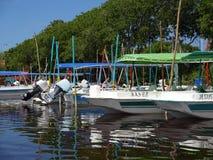 Rangée des bateaux de visite de faune Images libres de droits