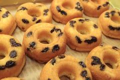 Rangée des beignets cuits au four Mouthwatering de raisin sec images libres de droits