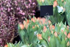 Rangée des bouquets de tulipe avec le label noir Photo libre de droits