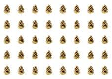 Rangée des cônes bruns comme un cône beaucoup de copies sur une carte postale blanche de fond de modèle de forêt de fond symétriq Photographie stock libre de droits