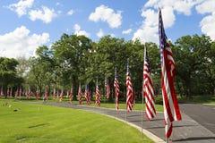 Rangée des drapeaux américains sur Memorial Day Photos stock