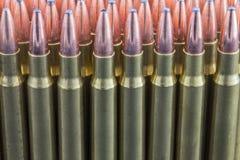 Rangée des munitions de fusil Image libre de droits