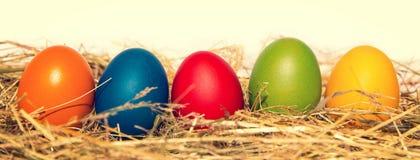 Rangée des oeufs de pâques colorés Photo libre de droits
