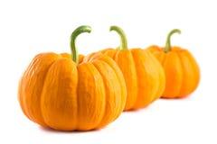 Rangée des potirons oranges frais Photos stock