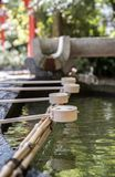 Rangée des tasses cérémonieuses de l'eau au tombeau de Yasui Konpiragu à Kyoto Images libres de droits