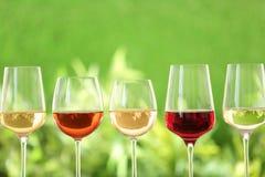 Rangée des verres avec différents vins images stock