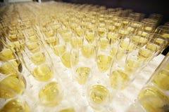 Rangée des verres avec le champagne Images libres de droits