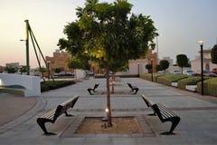 Rangées de banc de parc, lumière de tache sur des arbres Images stock