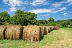Rangées de Hay Bales Photo stock