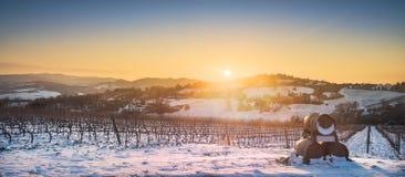 Rangées de vignobles couvertes par la neige en hiver au coucher du soleil Chianti, Sie images libres de droits