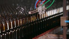 Rangées des bouteilles à bière dans l'usine clips vidéos