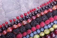 Rangées des fruits et des baies assortis : merise, bluberries, r photographie stock libre de droits