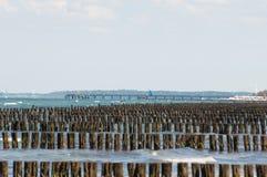 rangées des poteaux en bois en mer Image libre de droits
