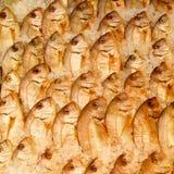 Rangées du poisson frais Photographie stock libre de droits