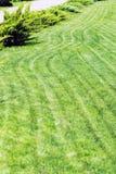 Rangées fraîchement fauchées de pelouse verte à la résidence de pays avec le pavillon Haie des cèdres frais Conception de paysage image libre de droits