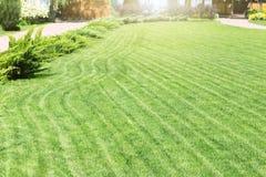 Rangées fraîchement fauchées de pelouse verte à la résidence de pays avec le pavillon Haie des cèdres frais Conception de paysage images stock